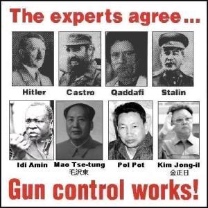 gun_control_works2